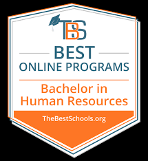 Accredited Online Interior Design Programs Fascinating The 48 Best Online Bachelor In Human Resources Degree Programs