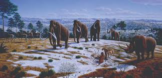 humans and the extinction of megafauna in the americas large mammals such as the mammoth used to roam north america but whether hunting played