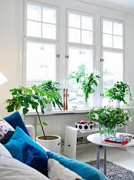 Small Picture 10 Beautiful Indoor Garden For Small Apartment Home Design And