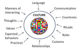 policy brief enhancing cultural competency responsiveness in image