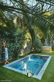 Backyard Swimming Pool The 25 Best Small Backyard Pools Ideas On Pinterest Small Pools