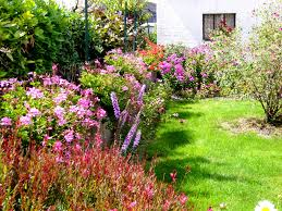 Jardinage Jardin Fleuri Le Blog De Jean Pierre Du 37 Jardin Fleuri