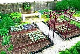 raised veggie garden vegetable irrigation