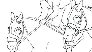 Breyer Coloring Pages Related Post Camelliacottageinfo