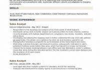 Sales Analyst Resume Sales Analyst Resume Www Sailafrica Org