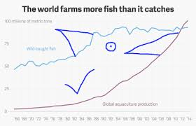 Sustainable Seafood Chart Charted The Rise Of Sustainable Fishing Looks Like The