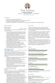 Resume It Project Manager Samples Alternative Vision Example
