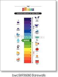Universal Indicator Ph Color Chart The Ph Scale Universal Indicator Ph Color Chart Diagram Art Print Poster