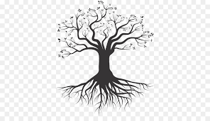 Free Tree Roots Png Cartoon Download 3 Png Transparent Free