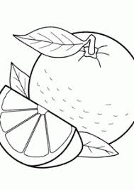 Small Picture Orange fruits coloring pages for kids printable free