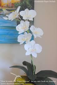 Paper Orchid Flower Paper Orchid Flower Rome Fontanacountryinn Com