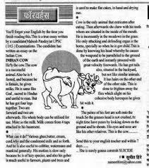 essay writing on domestic animals writing service essay writing on domestic animals