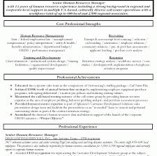 senior executive resume sample senior executive resume template cover letter payroll manager