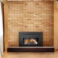 napoleon direct vent fireplaces rh hearthsidedistributors com napoleon gas fireplace insert manual napoleon gas fireplace inserts x4
