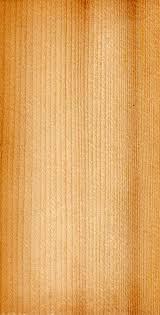 Ель древесина Википедия wood picea abies jpg