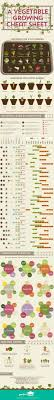Vegetable Growing Chart Vegetable Growing Cheat Sheet Infographic Gardening