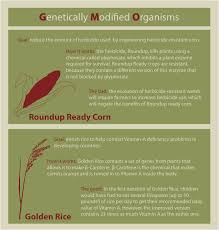 genetically modified organisms the good the bad and the future genetically modified organisms the good the bad and the future science in the news