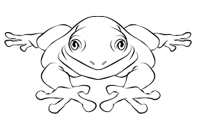 Small Picture Frog Coloring Pages Bebo Pandco
