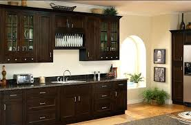 Dark Kitchen Cabinets With Light Granite Mesmerizing Light Granite Countertops With Dark Cabinets Focus Dark Cabinets