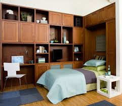 Built In Bed Designs Built In Bed Small Apartments Interior Design Solution