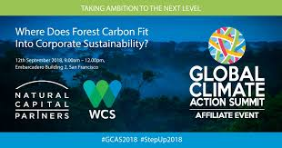 climate corporations san francisco offices. Modren Corporations Where Does Forest Carbon Fit Into Corporate Sustainability And Climate Corporations San Francisco Offices C