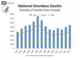 Cocaine Chart Cocaine Turns Brain Cells Into Cannibals Johns Hopkins