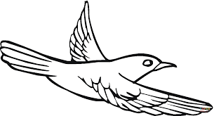 Small Picture Pigeon 15 coloring page Free Printable Coloring Pages