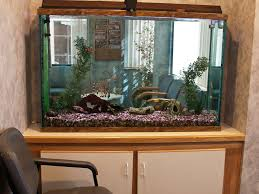 office fish tank. fish tank picture1 office e