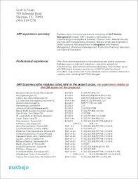 Word Format Cv Template Free Download Pakistan