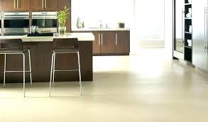 Light wood tile flooring Granite Light Wood Tile Floors Transitional Kitchen With White Cabinets Dirtyoldtownco Light Tile Floors Gray Wood Grey Effect Floor Tiles Such Look Are