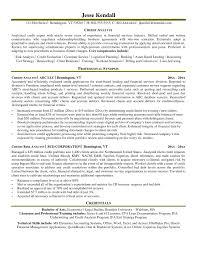 Analyst Resume Objective Analyst Resume Objective Credit Risk
