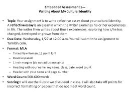 essay if would teacher development