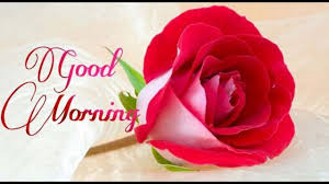 good morning wishes greetings whatsapp video message ecard sms love animated free