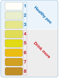 Dehydration Chart Urine Color