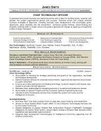 Foundation Program Officer Sample Resume Resume IT Officer Sample 1