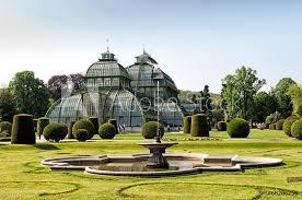 photo art print botanical garden in schonbrunn palace in vienna europosters