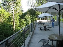 photo microsoft office redmond washington. Microsoft Campus Outdoor Eating Spaces In The Northwest. - Redmond, WA ( Photo Office Redmond Washington Glassdoor