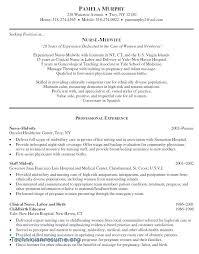 Professional Profile Resume Template Professional Profile Cv