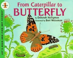 from caterpillar to erfly by deborah heligiman is part of my favorite nonfiction for kids series let s read and find out science