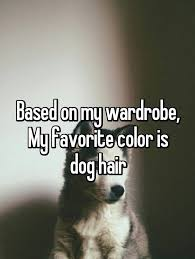 Cute Quotes For Instagram Mesmerizing Cute Dog Quotes For Instagram Upload Mega Quotes