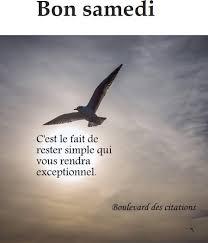 Citation Du Jour