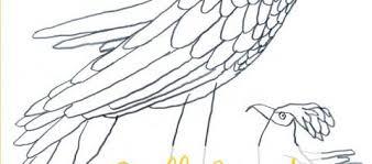 Uccelli Da Disegnare E Colorare Topipittori