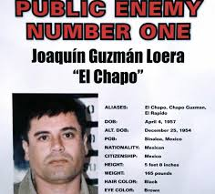 citations by questia how will el chapo s prison escape affect the war on drugs credit kxwt