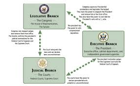 Three Branches Of Government Chart Flowchart Government Handbook