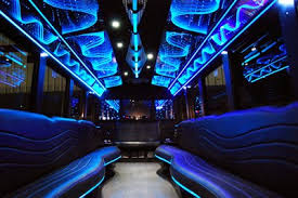 Image result for party bus miami