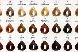 Alfaparf Evolution Hair Color Chart Evolution Hair Color Chart Lajoshrich Com