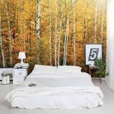 autumn birch tree wall mural