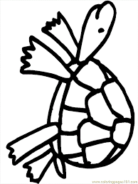 Small Picture Pictures Of Turtles For Kids Coloring Home