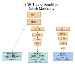 y dna of the british monarchy sur dna journal fig 5 notional phylogenetic snp tree