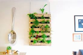 Follow this pallet living wall tutorial to make a pallet herb garden for  yourself that you can hang on the wall. Learn more here!
